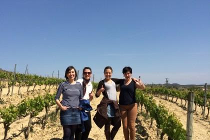 Besichtigung Weinstöcke ©Andreadis